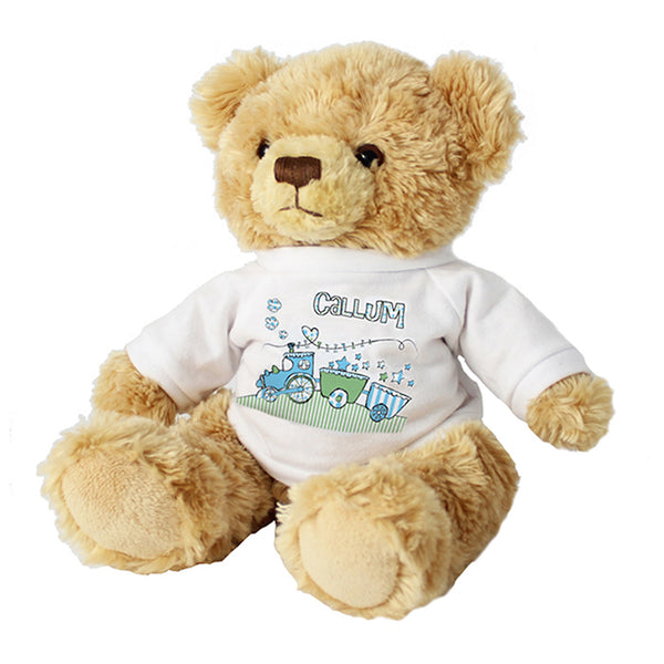 personalised teddy bear, suitable from 36 months, cuddly teddy bear, teddy bear with t-shirt