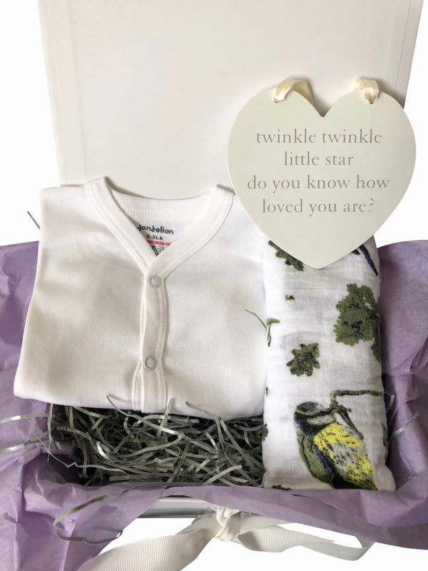 Unisex Baby Gift Box - 4 Pieces | Premature Baby Early Arrival Baby Gift Box