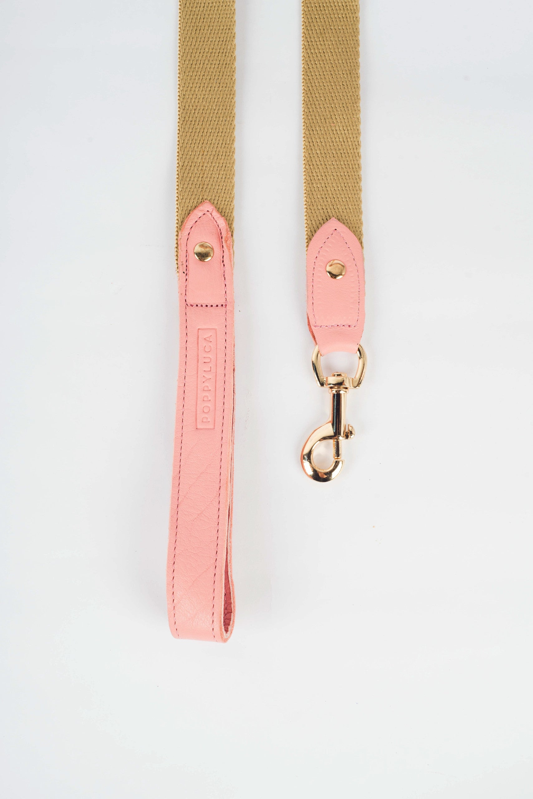 Butter Leather with Canvas Leash