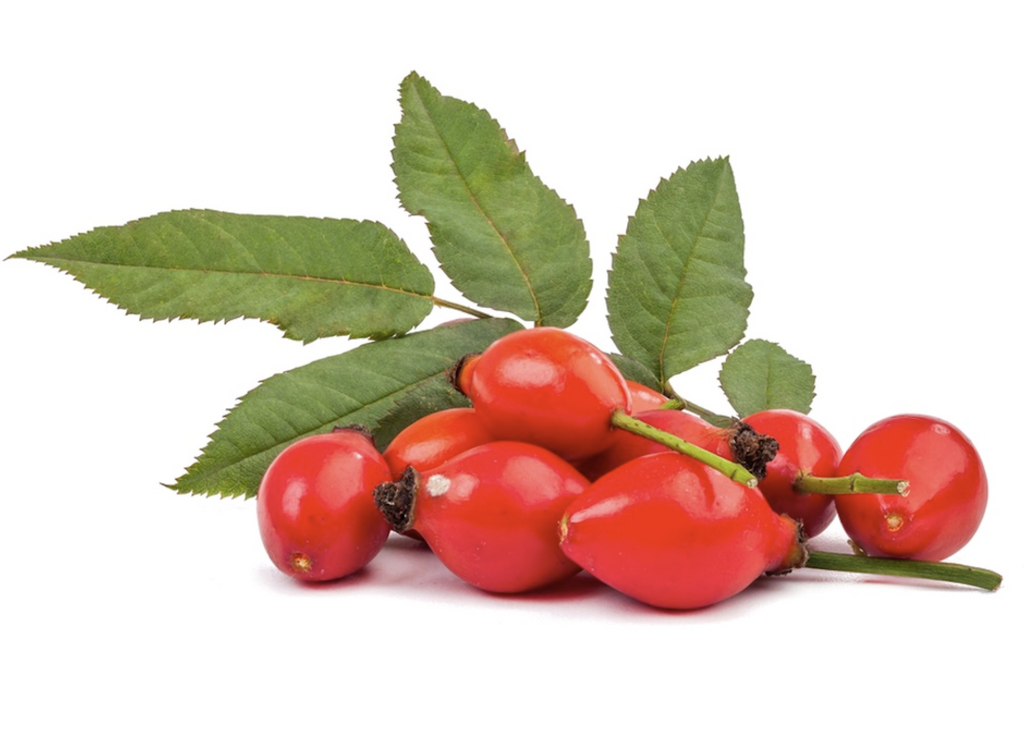 Rosehip oil - The secret to Calm skin?