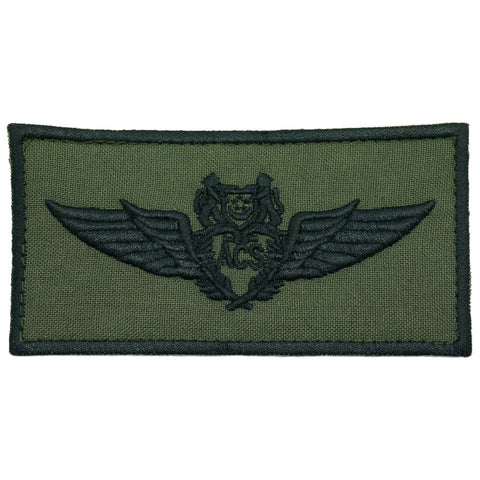 ACS WING PATCH - OD GREEN