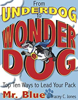 From Underdog to Wonder Dog