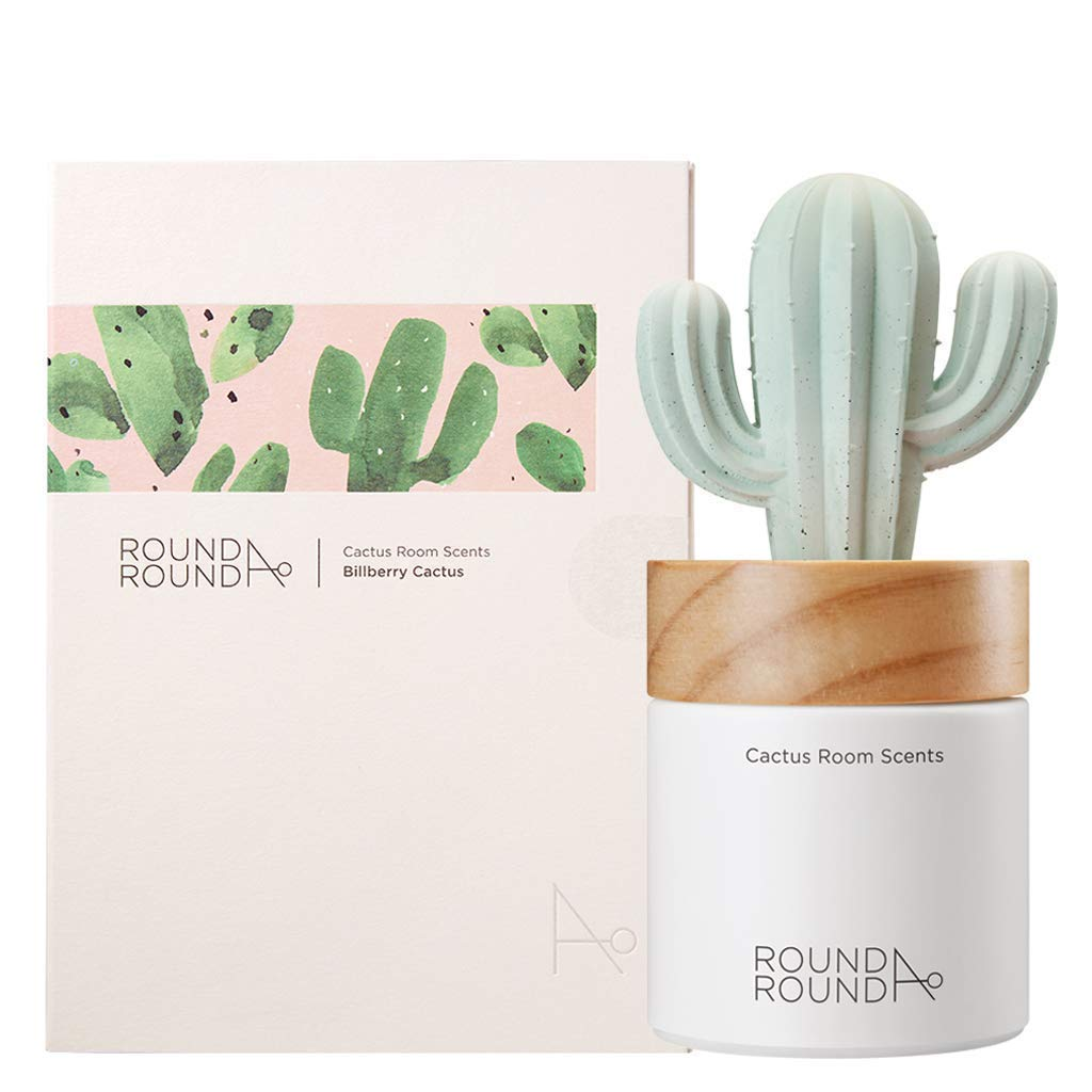 Cactus Room Scents 100ml / Gypsum Reed Fragrance Diffuser Fragrant Homes - MINDFUL ZEBRA