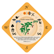 Food Forest Printable Cards (PDF)<br>English (Northern & Southern Hemisphere)<br>or Dutch (Northern Hemisphere only)
