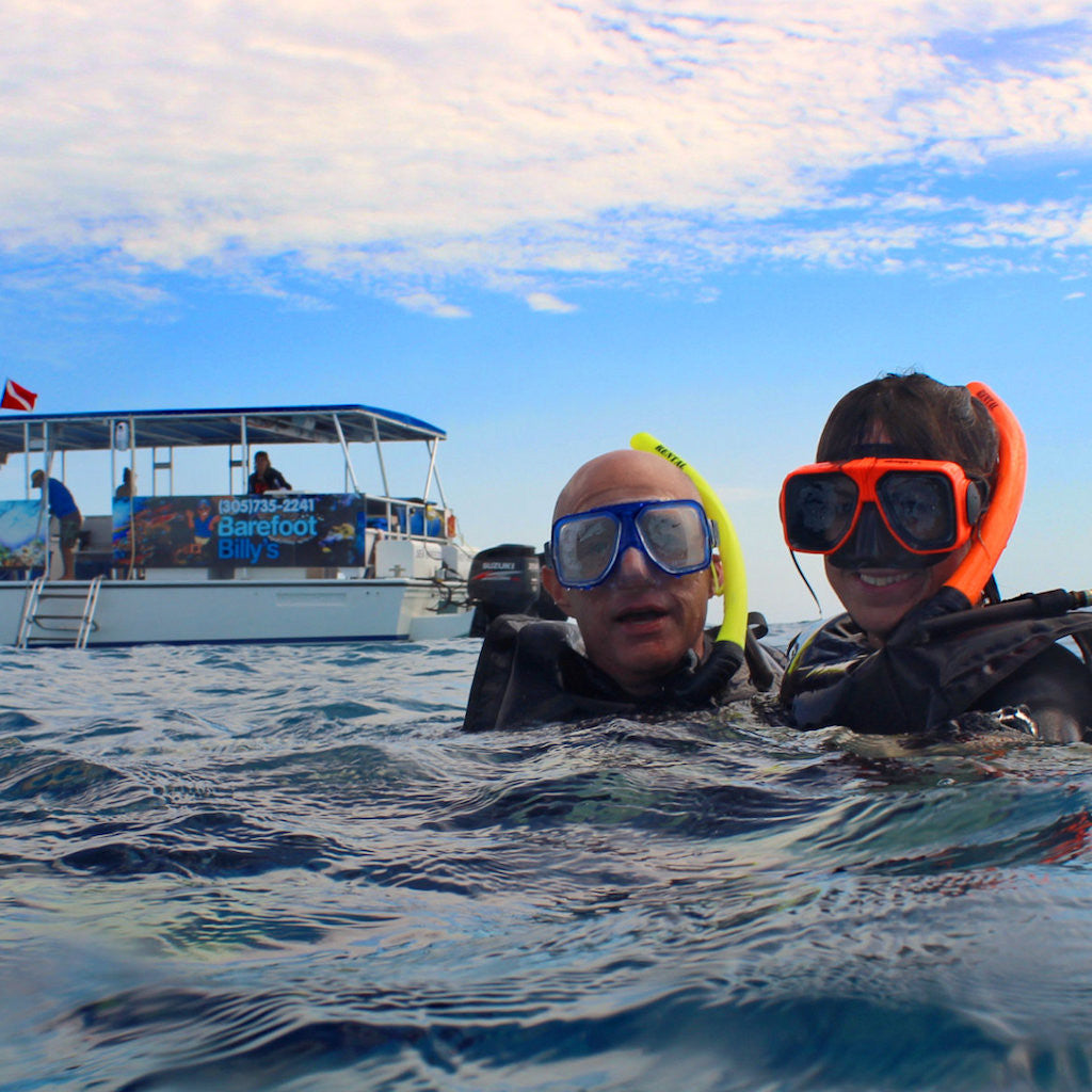 Seabreeze Dolphin Watch & Snorkel Tour