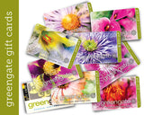 """Tiger Lily"" Image - greengate Gardening Gift Card"
