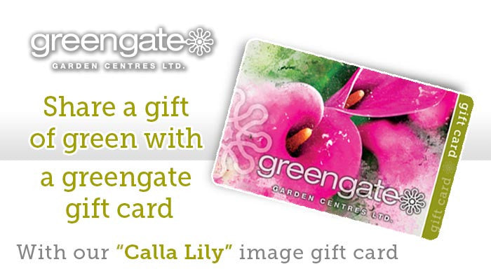 """Calla Lily"" image - greengate Gardening Gift Card with card holder"