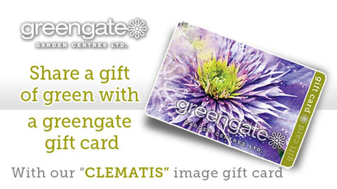 """Clematis"" Image - greengate Gardening Gift Card with card holder"