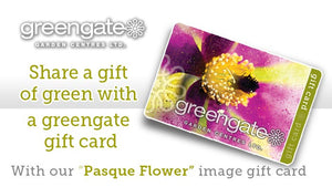 """Pasque Flower"" Image - greengate Gardening Gift Card with card holder"
