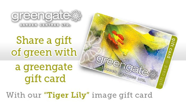 """Tiger Lily"" Image - greengate Gardening Gift Card with card holder"