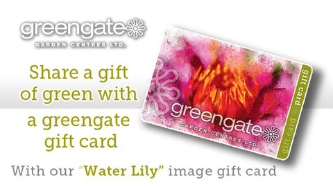 """Water Lily"" greengate Gardening Gift Card - with card holder"