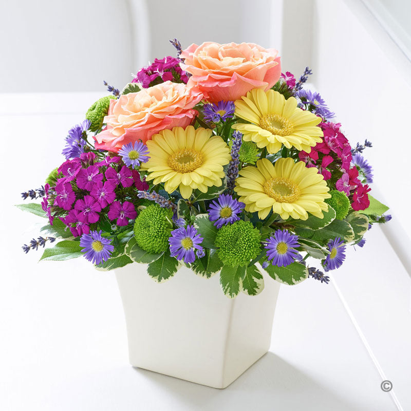 Summer Bright Arrangement