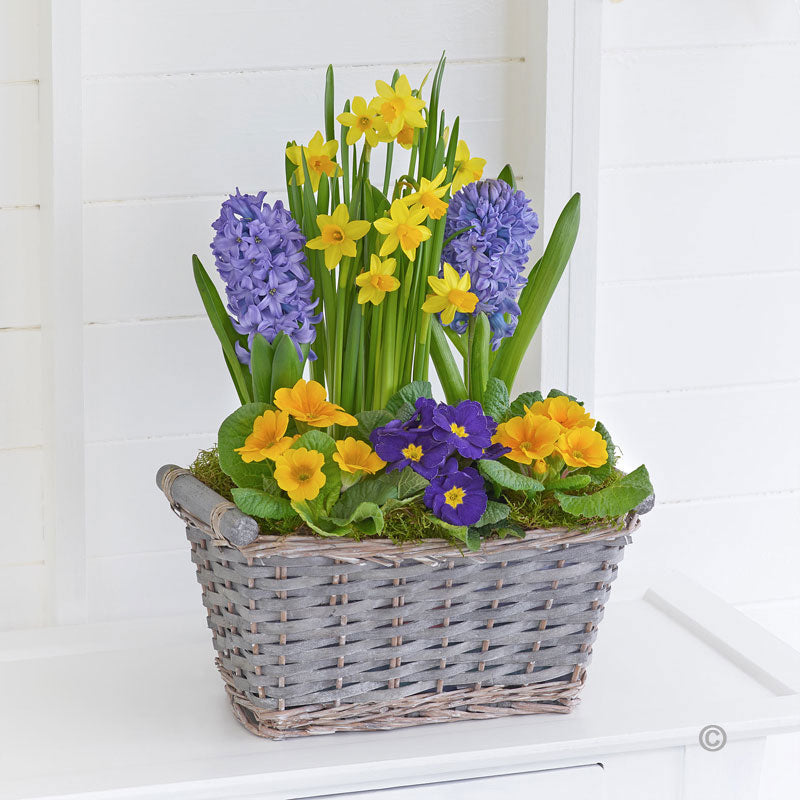 Classic Spring Basket