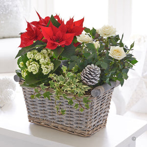Jingle Bell Planted Basket