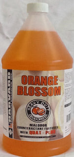 H Harvard Orange Blossom w/Quat Plus