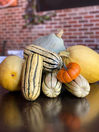 Different Ways to Get Down with Seasonal Squash!