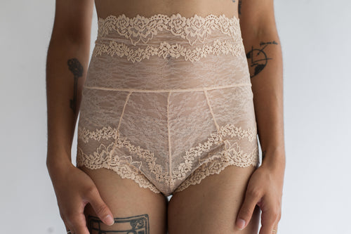 High Waist Hourglass Lace Brief in Sheer Rose Quartz Color