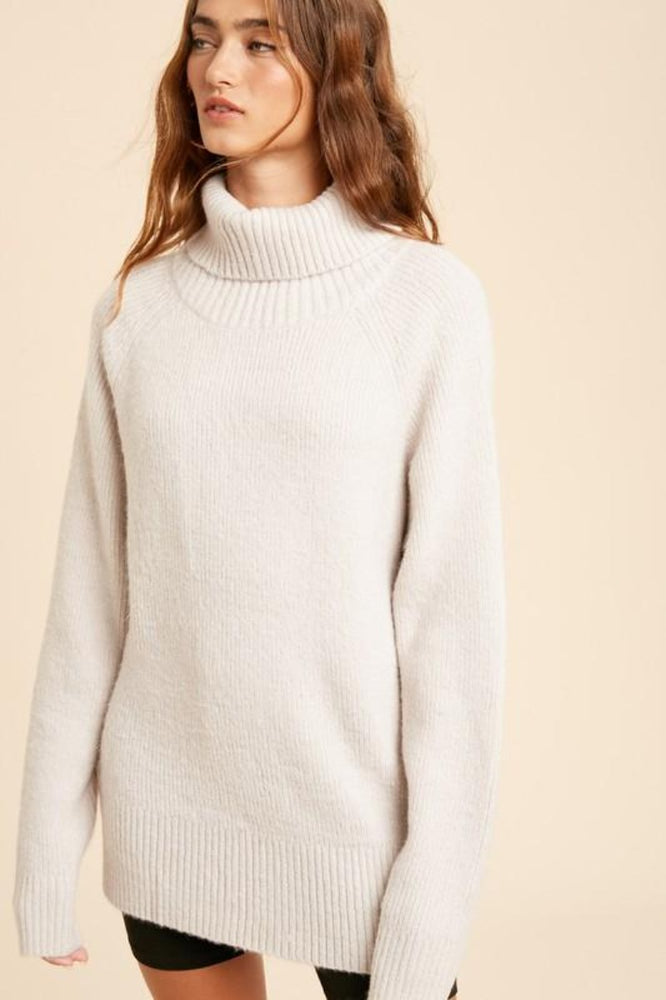 Long Ribbed Turtleneck | Silver