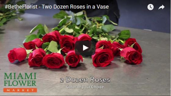 #BetheFlorist Video Series: Two-Dozen Roses