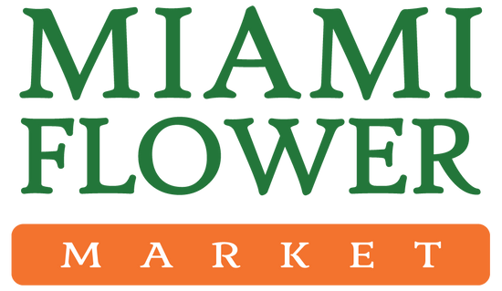 Miami Flower Market