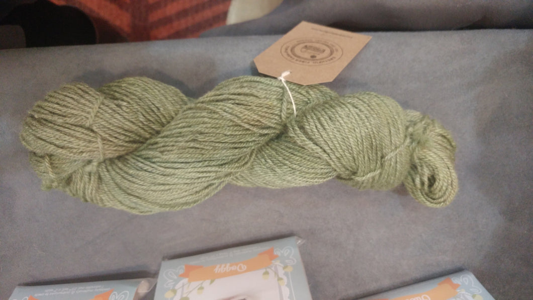 Light Green Romney/Alpaca/Silk yarn 200 yards worsted