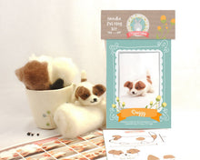 Animal Needle Felting Starter Kits