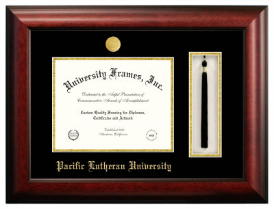 BUILD YOUR OWN DIPLOMA FRAME