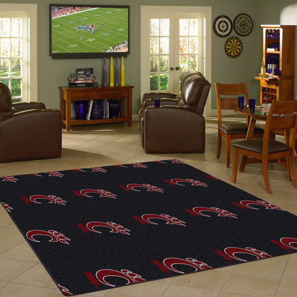Cincinnati University Repeating Logo Rug  College Area Rug - Fan Rugs