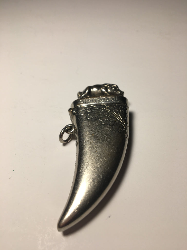 Vintage Figural Boars Tooth Match Safe