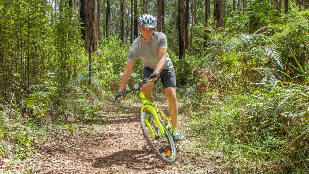 Choosing The Right Mountain Bike For You