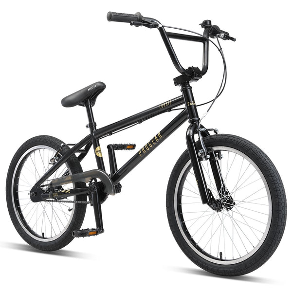 "Torrid 20"" BMX - Matt Black"