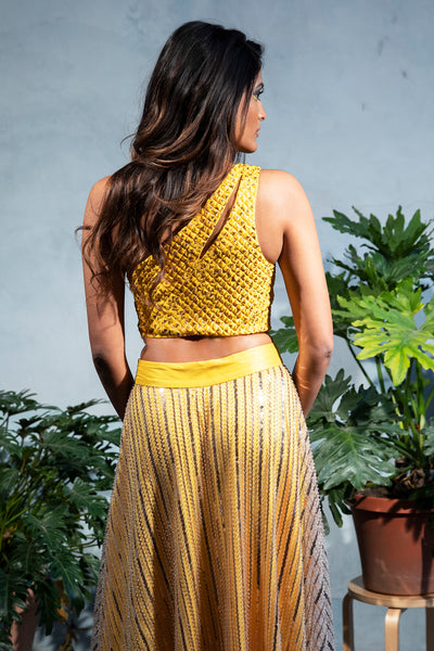 ZARI Jacquard Crop Top with Gold Diamond Specs - Back View - Harleen Kaur