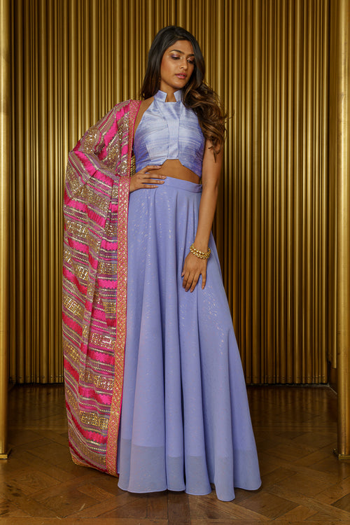 Striped Sequin Dupatta - Front View - Harleen Kaur - South Asian Womenswear