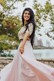 Harleen Kaur Alisha Cotton Polkadot Lehenga Skirt in Blush Pink