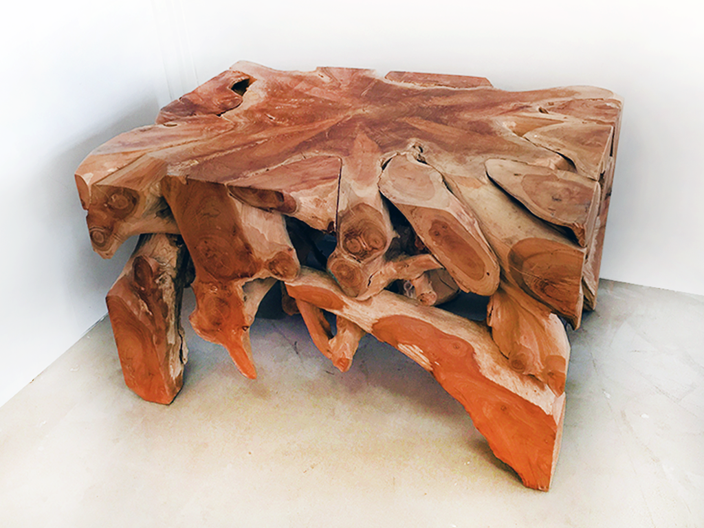 Teak Root Coffee Table #1