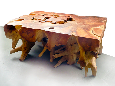 Teak Root Coffee Table #2
