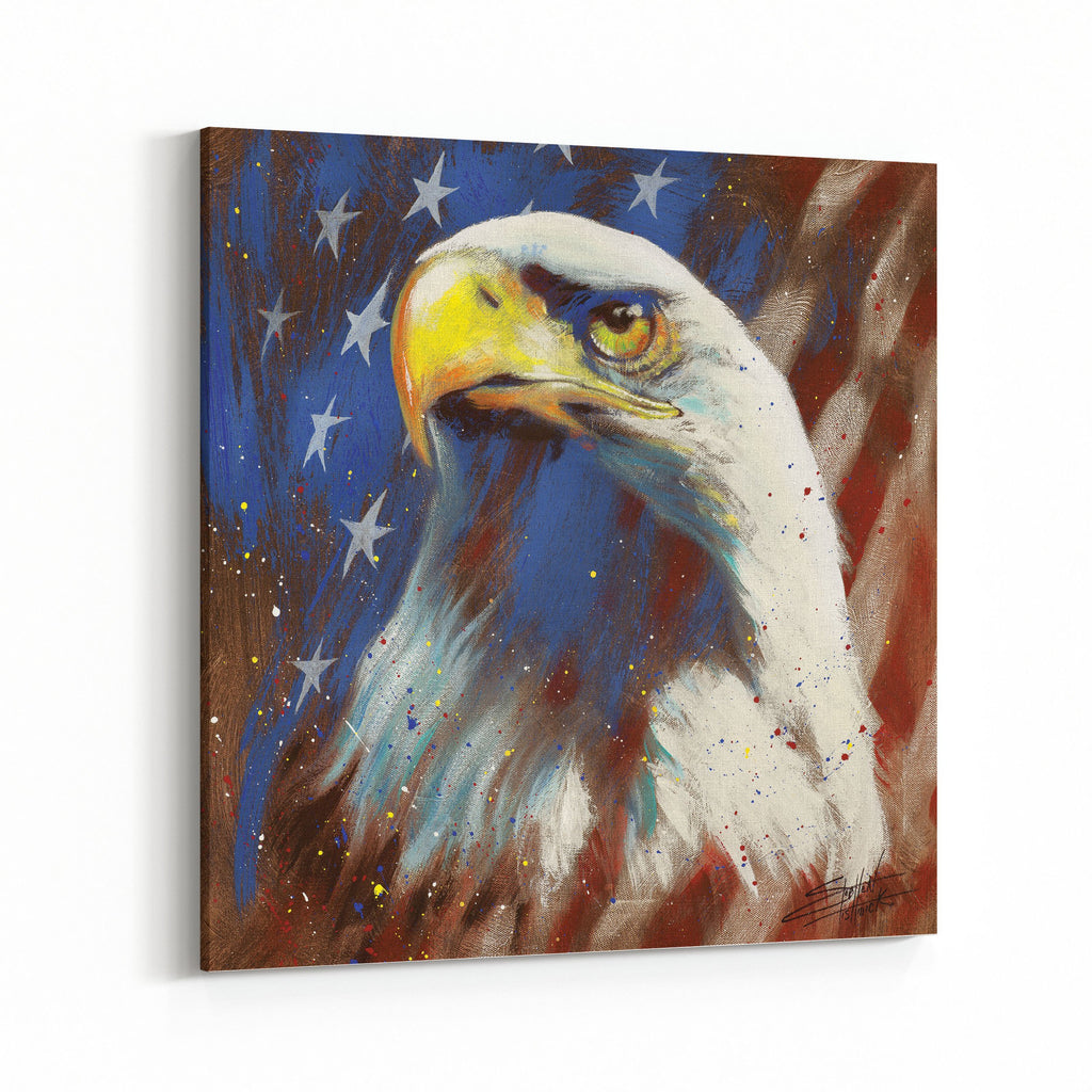 America Bald Eagle by Stephen Fishwick Canvas Art