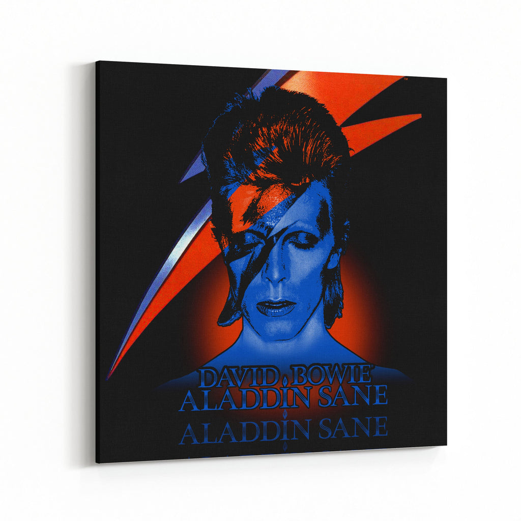 David Bowie Aladdin Sane Canvas Art