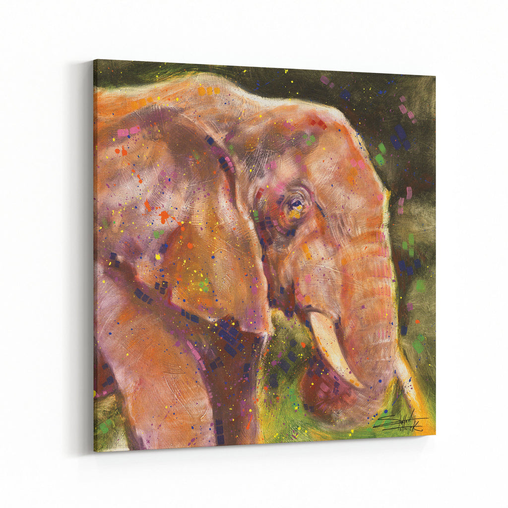 Elephant by Stephen Fishwick Canvas Art