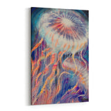 Jellyfish by Stephen Fishwick Canvas Art