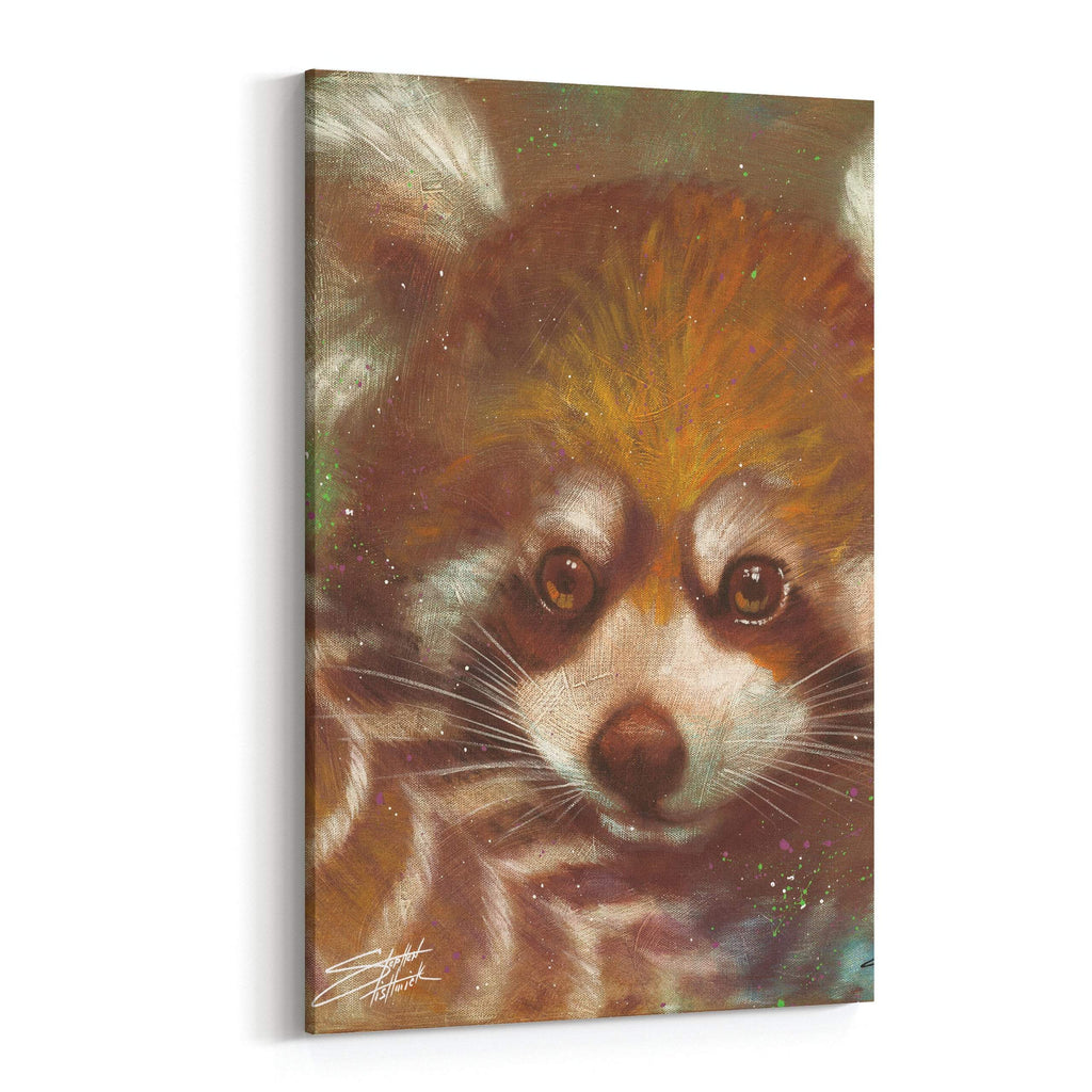 Red Panda by Stephen Fishwick Canvas Art
