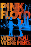 Pink Floyd Wish You Were Here Paper Poster