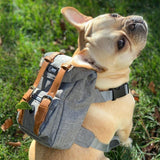 GREY DOG BACKPACK FOR FRENCH BULLDOG