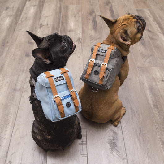 DAPPER SERIES BARK INDUSTRY BACKPACKS - NOW IN STOCK!!!