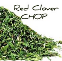 Red Clover CHOP
