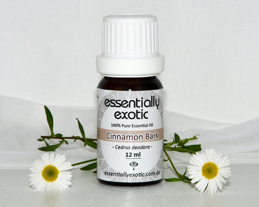 Essential Oil CINNAMON Bark 12ml