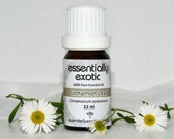 Essential Oil CINNAMON Leaf 12ml