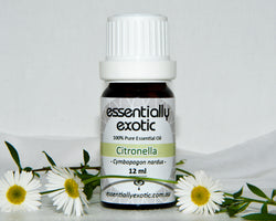 Essential Oil CITRONELLA 12ml