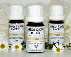 Essentially Exotic Beautiful Blend FOCUS 12ml