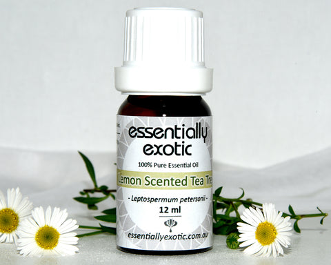 Essential Oil LEMON SCENTED TEA TREE 12ml